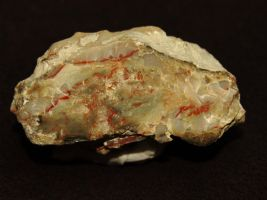 pic-a-day 080214 a --coprolite by pricecw-stock