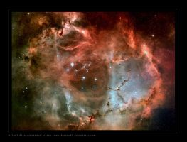 Rosetta Nebula Project by Hector42