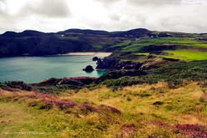 Fanad Head Landscape by medinka