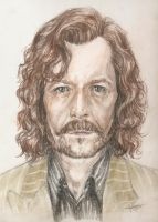 Sirius Black by vaccatrea