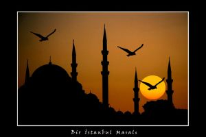 An Istanbul Story by deathisonsaletoday