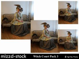 Witch Court Pack 3 by mizzd-stock