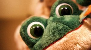 Froggy Eyes by abe70280