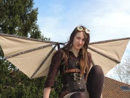 Steampunk Wings 3 by Searsha