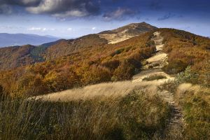 Autumn in Bieszczady 6 by CitizenFresh