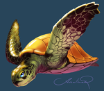 Turtle! by ancalinar