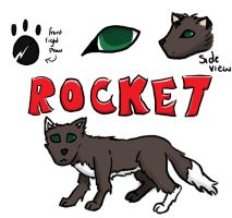 rocket extra info by star-bot381