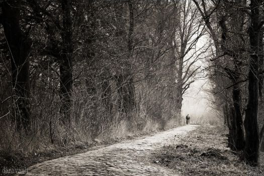 A road, a bicycle and a man by daravanh