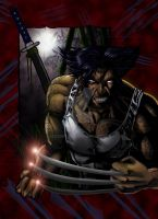 WOLVERINE by jey2dworld