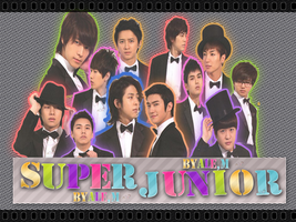 IS SUPER JUNIOR  BY ALE.M by DDLoveEditions