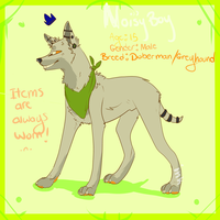 ~:gift:~ Noisy-boy ref sheet by city-kings