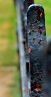 Rusted Fence by PAlisauskas