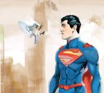 Superman vs Bird by samuraiminister