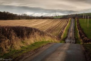 Down Country Roads by SnapperRod