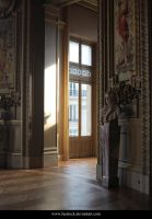Paris Opera House11 by faestock