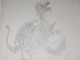 Dragon2 by lochness2012