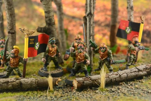 Imperial Guard Diorama 3 by GeneralCambronne