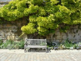Bench III by fairling-stock