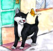 Sylvester and Tweety by Grion