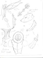 Engle Reference scribbles by ChemicallyAbsolute