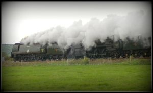 Tangmere and Cromwell by stevepoxon