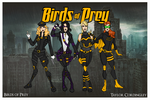 My DC Universe - Birds of Prey Redesigned by Femmes-Fatales