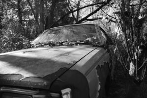 rusted car by McFlavin22