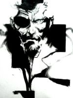 DAVID HAYTER METAL GEAR SOLID TRIBUTE by BUMCHEEKS2