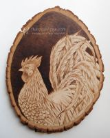Rooster Pyrography by aruarian-dancer