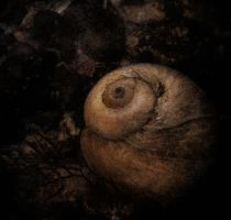 the heart of darkness by hclay