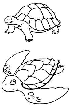 Coloring Pages: Turtles by TeraSullen