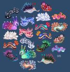 Nudibranch by SIIINS