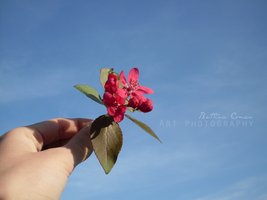 For you by bettina-coman