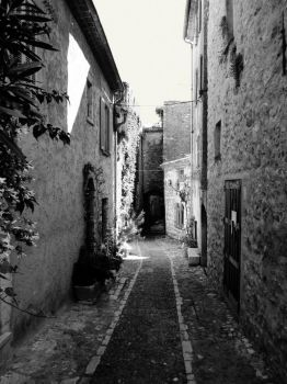 Ruelle by Zoozoo619