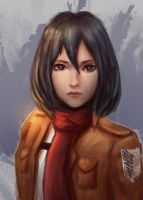 Mikasa by East--Wind