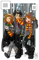 harry, ron and hermione by bechan