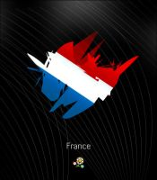 Euro 2012: France by ZincH21