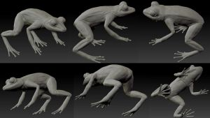 The Frog - 3D by Caina-chan
