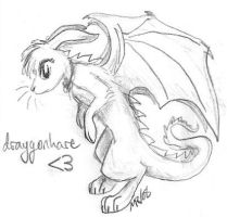 Draygonhare by singing-hallelujah