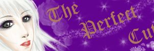 The Perfect Cut banner by Vallia