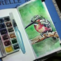 watercolors practice - one more by tolagunestro
