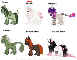 Plant Design Challenge Pony Adopts Set 1 by By-The-Lantern-Light