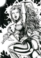 Dark Phoenix ATC Inks by DKuang