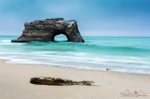 Natural Bridges State Beach by tassanee
