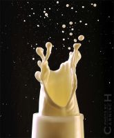 Splash Sculpture n.2 by Carnisch