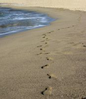 Footprints on the seashore. B. by IceBeer15