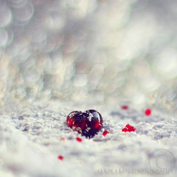 even cold heart can bleed by Orwald