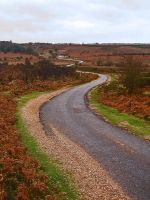 Winding Road by itsallforyousir