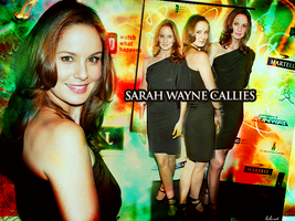 Sarah wayne callies wallpaper2 by layaly
