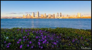 A San Diego Sunday by AndrewShoemaker